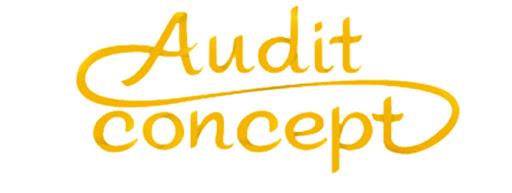 logo-audit-concept